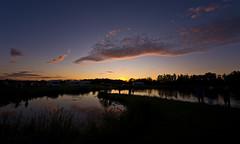 Dugout Sunset