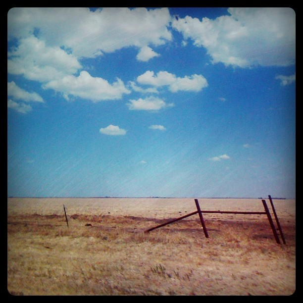 The view out my window...nothing but blue skies as far as the eye can see. @instagram