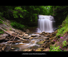 A Place To Remember (Fionn Luk) Tags: longexposure ontario canada tree green fall nature water 30 canon landscape waterfall stream hamilton scene falls 5d seconds fionn
