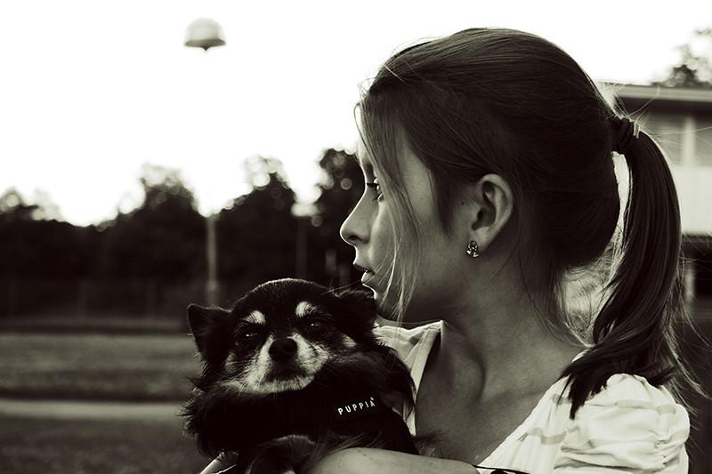Saga och hunden