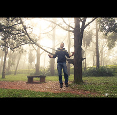 So Lite! (abhiomkar) Tags: morning trees mist tree green leaves fog bench geotagged early bangalore hills nandi karnataka nandihills geo:lat=133666667 geo:lon=7768333329999996