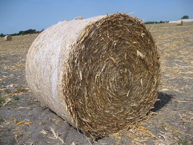 Bale Close