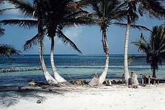 Xcalak_beach