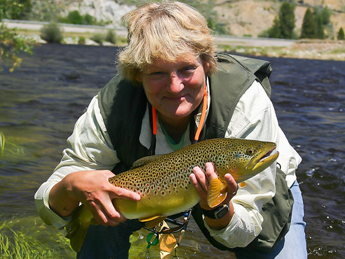 Big Hole Brown Trout 1
