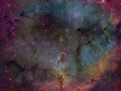 Elephant's Trunk and IC1396 (kappacygni) Tags: nebula phd deepspace cepheus baader ic1396 elephantstrunk nebulosity narrowband starlightxpress eq6 Astrometrydotnet:status=solved qhy5 astro:subject=ic1396 Astrometrydotnet:version=14400 sxvrh18 tmb92ss competition:astrophoto=2011 meade127 astro:gmt=20110601t0030 Astrometrydotnet:id=alpha20110716396038