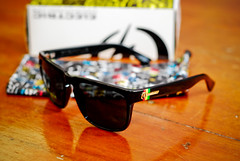sunglasses electric shades nikond80 50mmf8 knoxviller