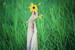 14/100 (AmyJanelle) Tags: flower green field grass yellow pose saturated hands arms bright yellowflower bracelet armpose