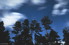 4 (David Parks - davidparksphotography.com) Tags: david parks nikon d700 estes park colorado trees sky clouds motion stars star trails long exposure sigma 1020mm