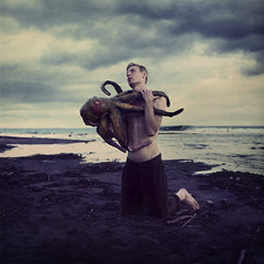 in a world of greater mortals (brookeshaden) Tags: storm man beach water animals octopus brookeshaden texturebylesbrumes