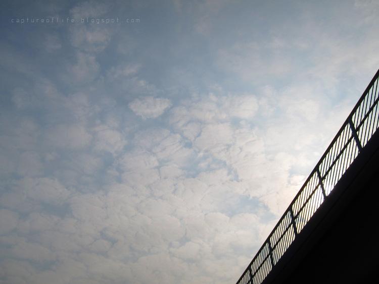 2011_0406_162546edz