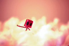 clouds (GordanMes) Tags: camera pink light shadow red en blur love glass rose metal clouds painting de rouge photo al bottle wire funny die comic power wine lumière cigarette like fil style mini cigar coton story cap amour strip alcohol hate histoire vin doggy nuages chanel liege blanc minimalist cigare retard fer bonhomme minature appareil verre oeufs oeuf capone bouchon caracter bande parfum haine egges scène mise puissance dessinée papirer hummour