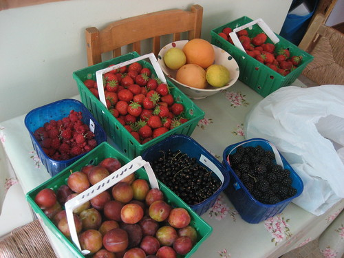 PYO fruit haul