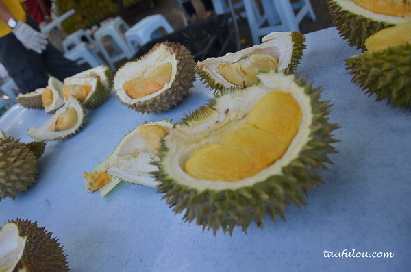 durian part 2 (12)
