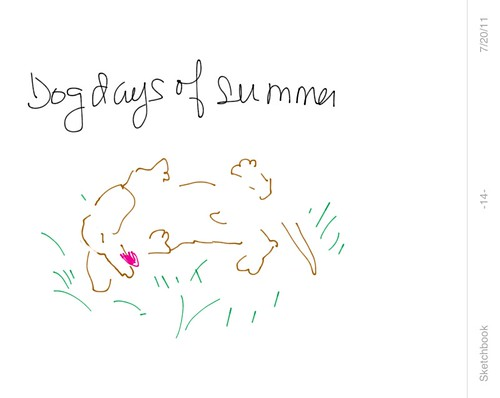 Dog Days of Summer 01