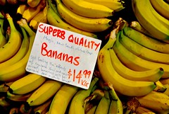bananas 14.99 (Ian Riley) Tags: street sign price fruit market label central australia bananas bunch adelaide sa expensive yasi southaustralia cyclone explanation gouger