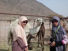 CIMG0793 (anoey_here) Tags: journey baitullah