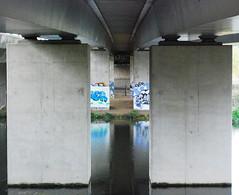 (d.o.photo) Tags: bridge reflection composition graffiti photo paint do shoot photographer dom symmetry spray crop harris