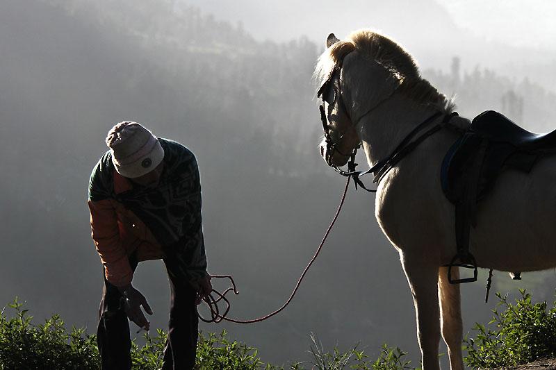 Horseman IMG_5054-w