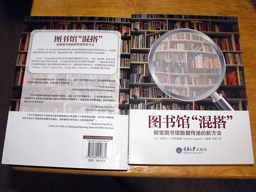 Library Mashups in Chinese
