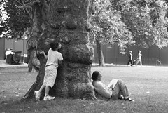 suspense (Gavin Mills Photography) Tags: park leica game tree london relax 50mm reading book piccadilly summicron greenpark m8 peek mayfair suspense