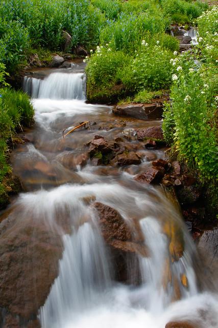 Griffith Creek-2.JPG