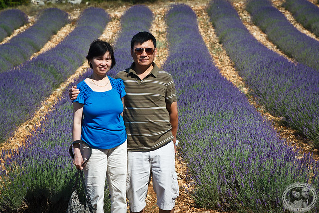 My Parents In A Field of Lavender