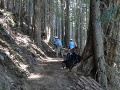 Trail crews on Crystal Peak trail not far up from creek.
