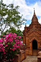 Feels like an Old English church with that red bricks and flowers (Icy_Aj) Tags: sunset temple pagoda buddha burma buddhism myanmar horsecart pagan bagan lacquerware htilominlo buddhismarchitecture ricedish templearchitecture goldenland