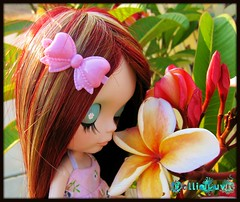 """""""Brena LOOOVES Plumies!!""""...Re-Vision!"""