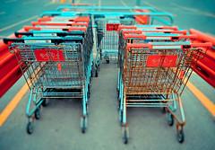 365 arlophotochallenge 218 / 365 - Shopping