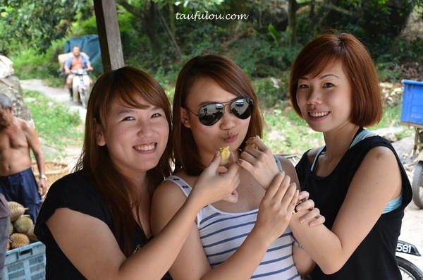 balik pulau durian (14)