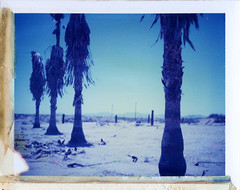 Dateland, AZ (moominsean) Tags: summer arizona abandoned palms polaroid desert heat 190 dateland type108 expired012000