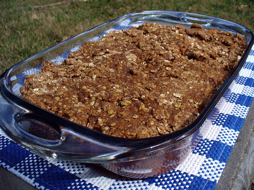 2011-09-27 - Caramel Apple Crisp - 0015