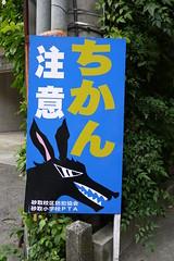 Kumamoto Chikan