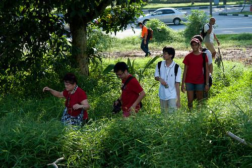Trekking through undergrowth