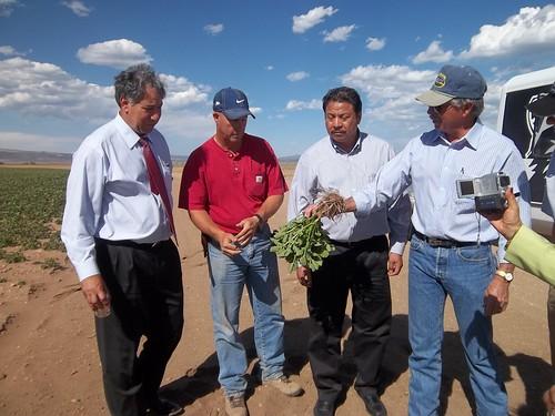 Under Secretary Ed Avalos, Monte Smith, Colorado potato grower, Jose Luis Vitela Mijares, produce buyer, Soriana, Mexico and Commissioner John Salazar, Colorado Department of Agriculture.