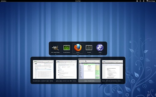 Fedora 15: Alt+Tab cycle through applications (multiple windows)