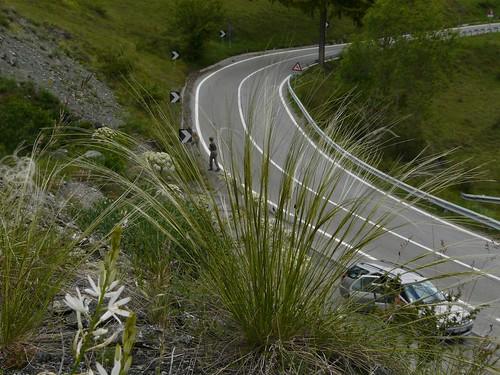 Route du retour à Sestrière 253