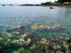 Objek wisata pantai Bangka Belitung (Bintang Olym) Tags: travel guide tours bangka belitung