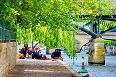 Paris, Pique-nique  la pointe de l'le de la Cit (paspog) Tags: paris france cit canard iledelacit piquenique quaidelhorloge mygearandme gifrancejuly
