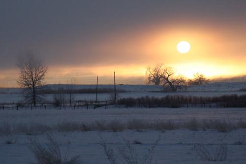 Photo - January Sun