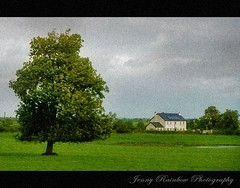 Green Green Grass at Home. Rural Scene on the Way to Carrick-on-Shannon,  Ireland (Jenny Rainbow (jenny-rainbow.pixels.com)) Tags: house tree green rural landscape nikon nostalgie d300 18200mm jennyrainbowartphotography greengreengrassathome