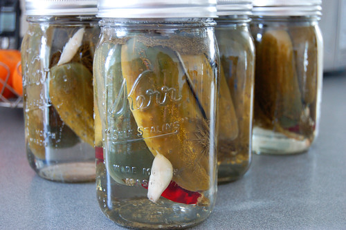 WeekdayPickles