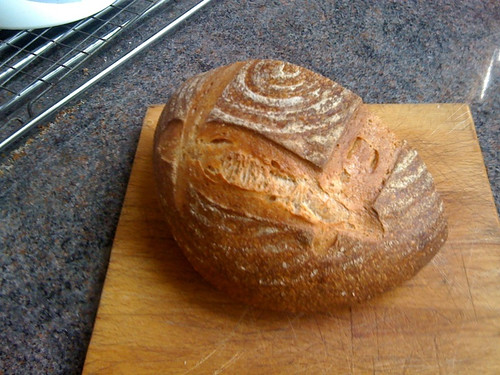 Wholewheat and Rye Sourdoughttp://www.blogger.com/img/blank.gifh by flimbag