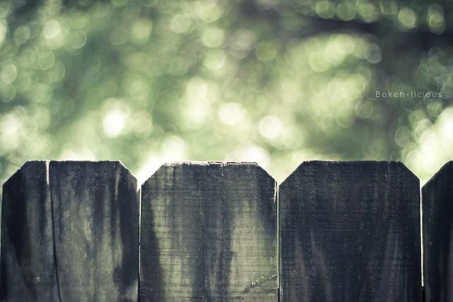 IMAGE: http://farm7.static.flickr.com/6023/5952130569_bdaa42944e_z.jpg