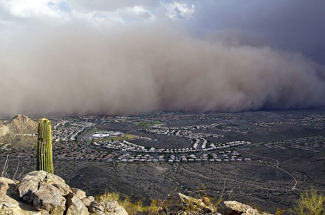 Day the sky turned brown 3,000ft high dust cloud rolls across Arizona AGAIN  1