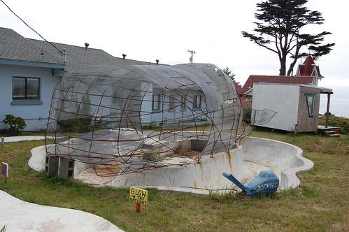 Westort Whale.