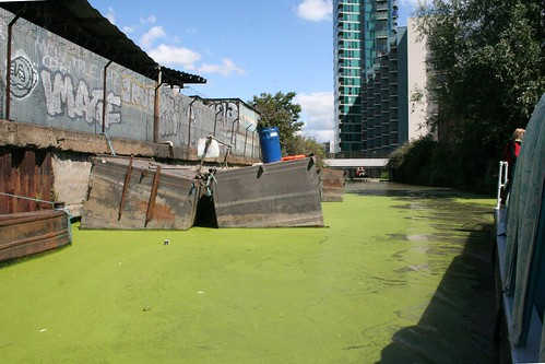 Boats trapped by the algae blooms