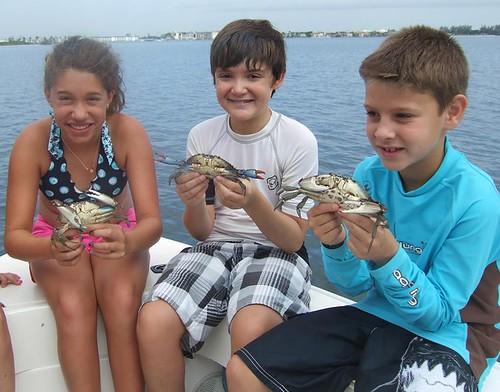 3 blue crabs