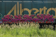 Beam (A & P Bench) Tags: railroad train bench graffiti pacific steel rail railway canadian graff railfan freight rolling rollingstock fr8 benching